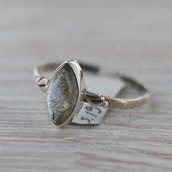 Labradoriidiga sõrmus 19