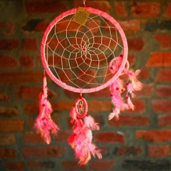 Unenäopüüdja roosa 27x60cm