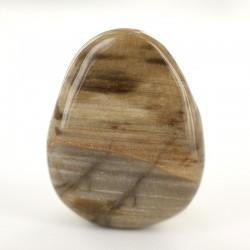 Kivistunud puit 3,5cm